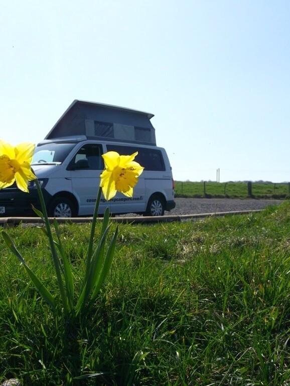flowers and sandy camper van rent