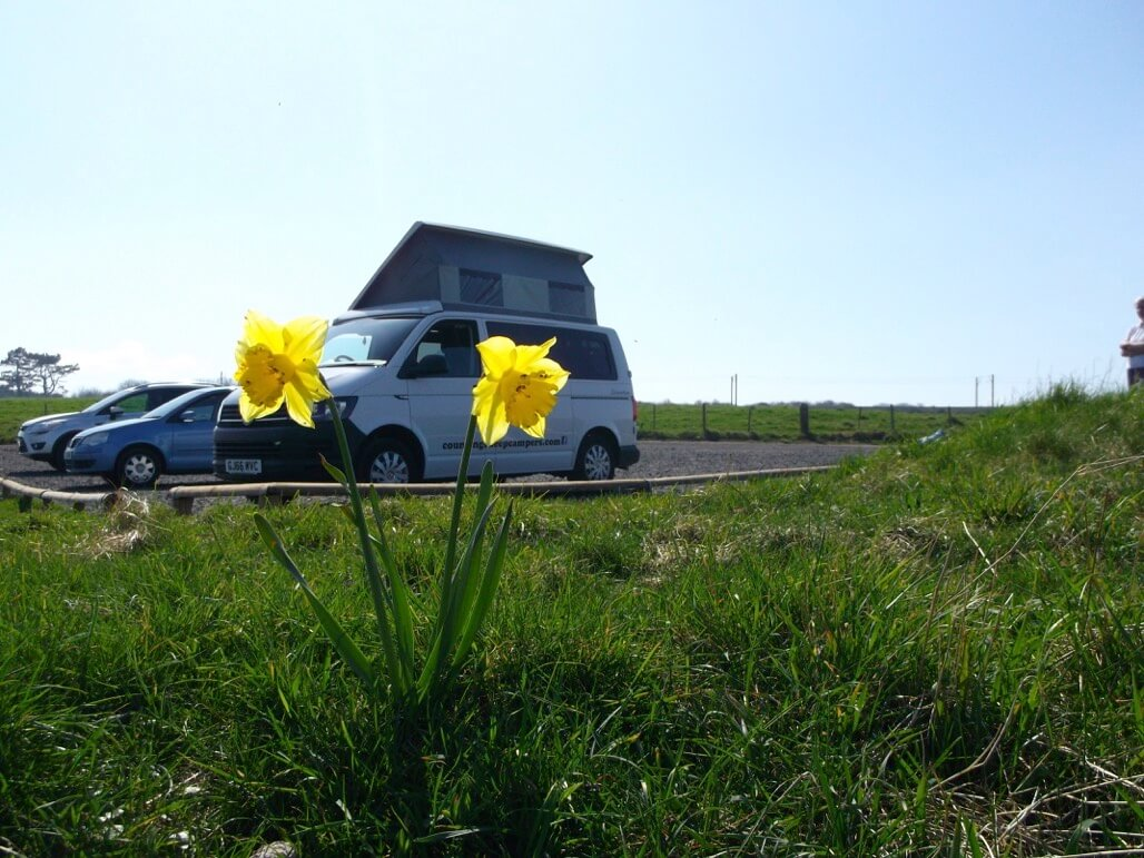 flowers and sandy camper van rent