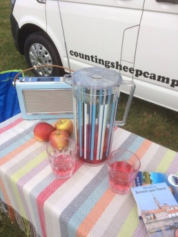 picnic table logo in background motorhome rent